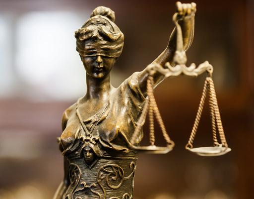 Гражданското общество и правораздаването